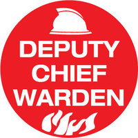 Deputy Chief Warden Pictogram