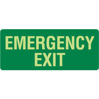 350x140mm - Self Adhesive - Luminous - Emergency Exit