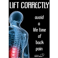 Lift Correctly, Avoid a Lifetime of Back Pain